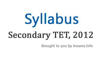 Secondary TET Syllabus