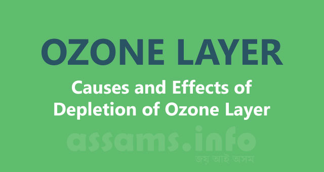 ozone depletion and volatile organic compounds essay Ozone depletion can cause increased amounts of uv radiation to reach the earth which can lead to more cases of skin  (nox) and volatile organic compounds (voc).