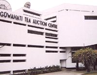 Tea Auction Guwahati